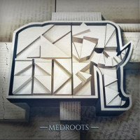Mediterranean Roots – MedRoots